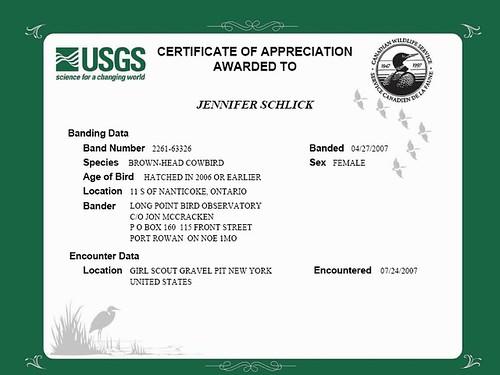 Bird Band Certificate