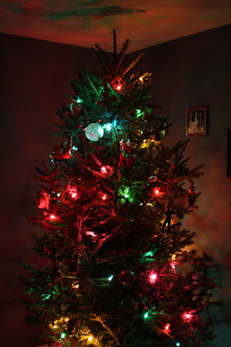 Ornaments on Tree