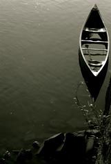 slowly sinking