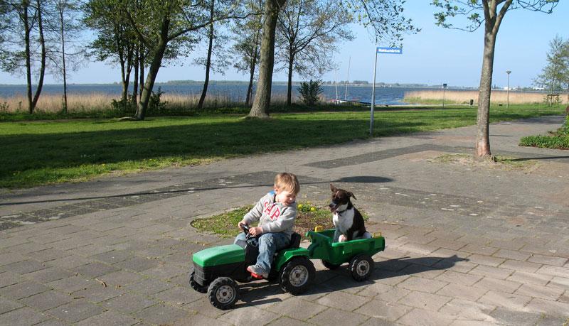 Viggo&tractor-IMG_0871a