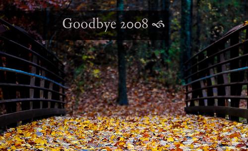Goodbye 2008