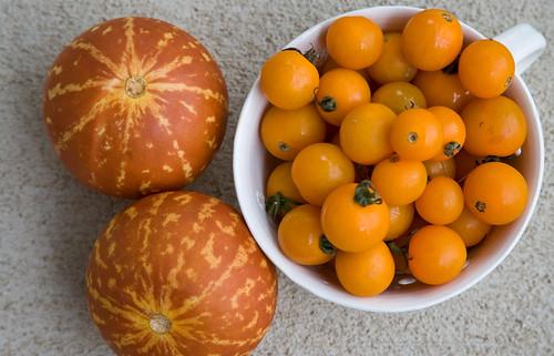 Orange from the Farmer's Market
