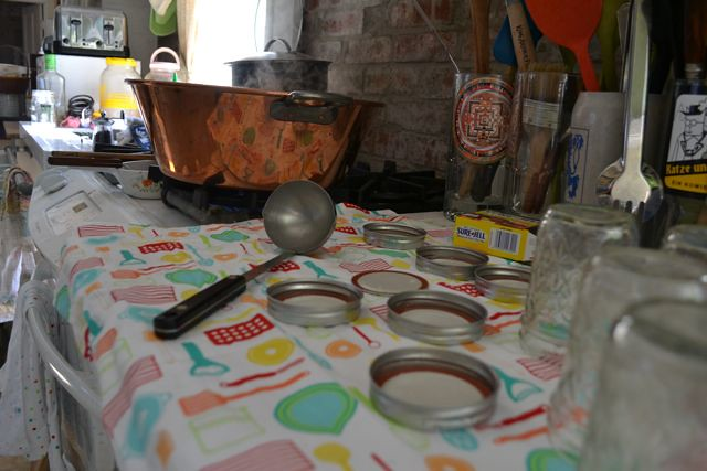 Jelly setup