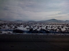The Snowy Nevada Desert