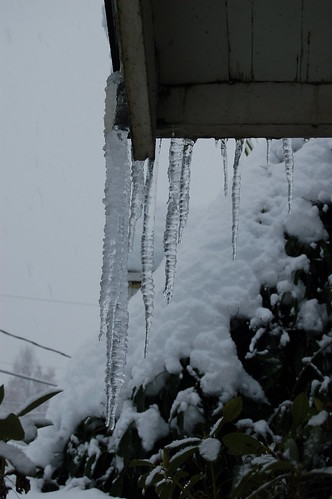 Icicles on the rooftop