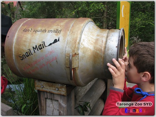 Taronga Zoo - Snail Mail?