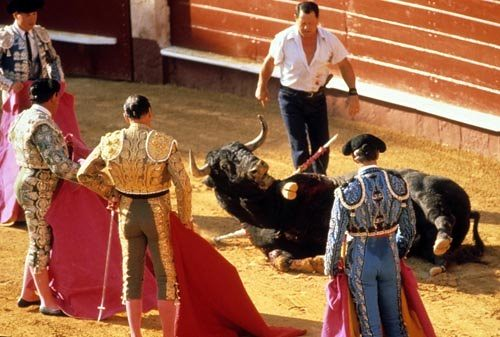 The Last Arena   In Search Of The Spanish Bullfight   Page      The question of whether a modern society should endorse animal suffering  as entertainment is bound to cross the mind of any casual visitor to a  bullfight