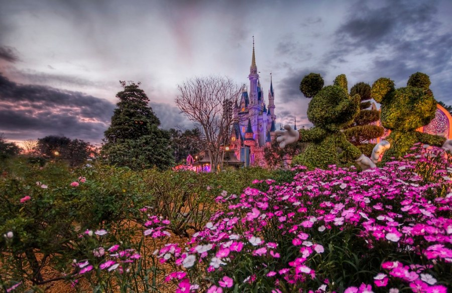 Cinderella at Sunset