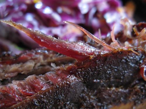 beef ribs & coleslaw