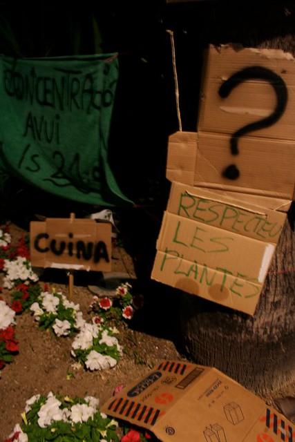 acampadacdv2