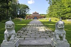 Lion Guardians of the Bodhi Path