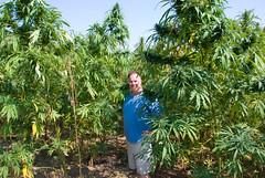 Me in a hemp field