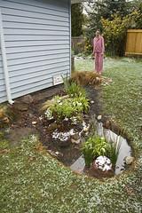 Rain Garden Success!