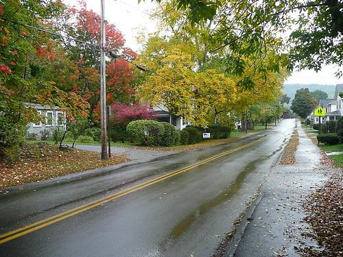 Rain-slicked