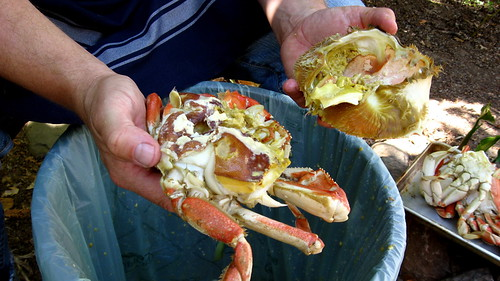 how to cook live whole dungeness crab