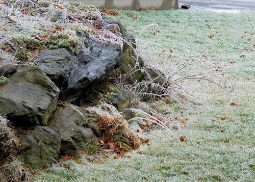 December Ice Storm 5