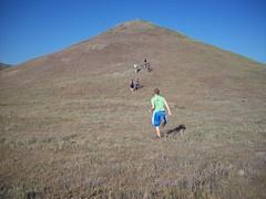 Kids running up a hill