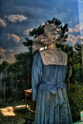 Through the Window #16—Pest House Museum III