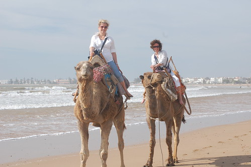Tracy and Dana riding camels in Essouria, Morocco