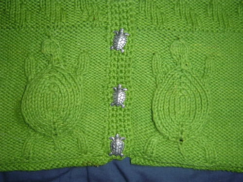 Heres the closeup - I love that the designer found turtle buttons, too!