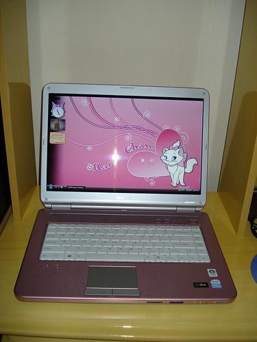 Notebook Sony Vaio Pink!