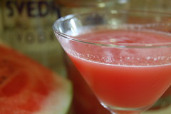 Watermelon cosmos