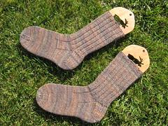 Socks_2008Mar22_TrekkingBrowns_Mama