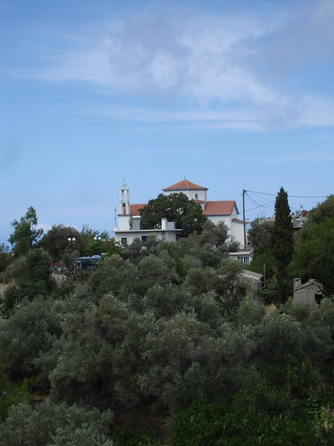 In the Olives lies the Income | Eleni's blog in Ikaria