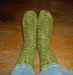 Seaweed Socks - 1