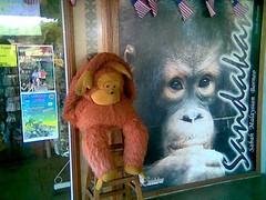 Orang Utan mascot at Sandakan airport