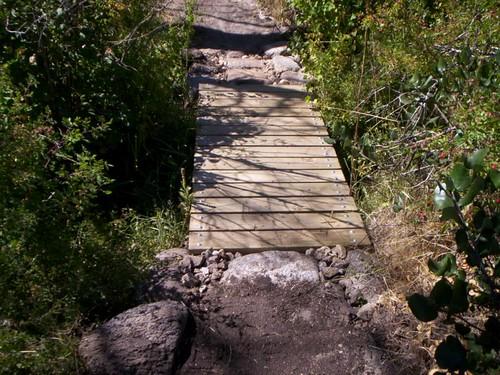 Trib. Bridge