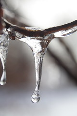 Drip 02