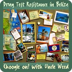 Drug test resistance