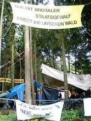Waldbesetzung Kelsterbach Juni 2008 (09)