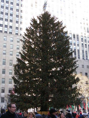The Rock's Christmas Tree