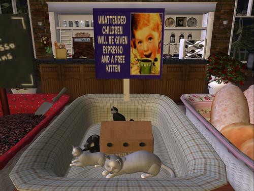 Second Life Celebration: SL8B