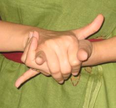 kurma Hand gesture