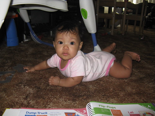 Crawling Elle