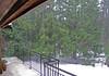 Pouring Rain 6530.jpg