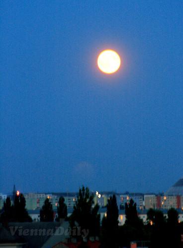 blue + moon