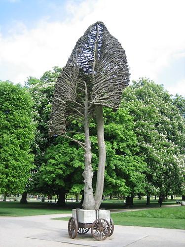 Coolest Tree