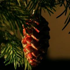 Weihnacht08 2_2008 12 20_7254
