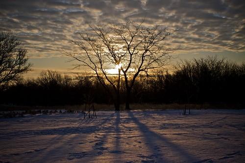 Sunrise at the Riddle Run