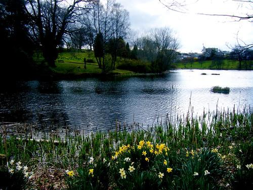 A Springtime Scene