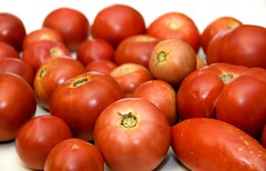 CSA Tomato Overload
