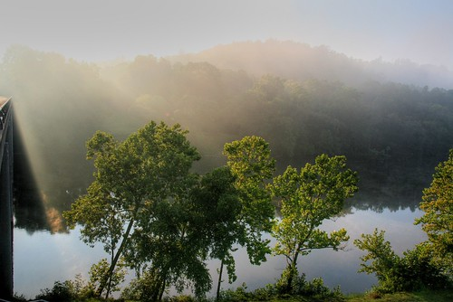 The Morning Light and Mist