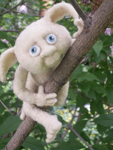 Little tree climber!