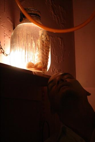The end is near: Alcatraz ER Penis in a Jar , Tokyo