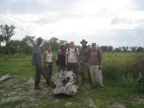 posing with elephant skull