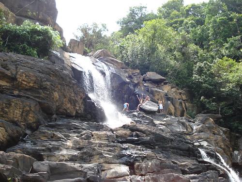 Sharavathy Valley 153